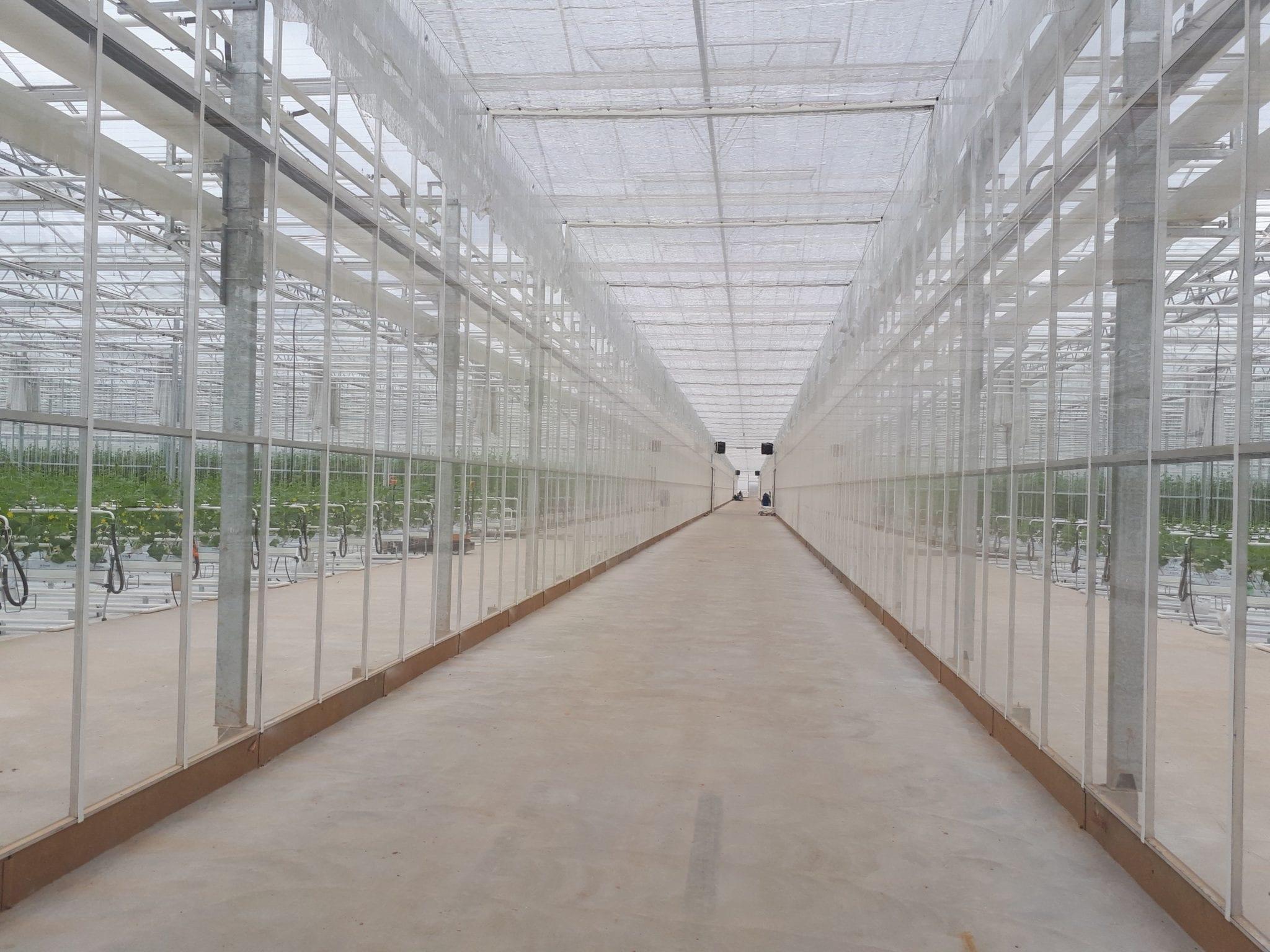 6 ha šiltnamio projektas